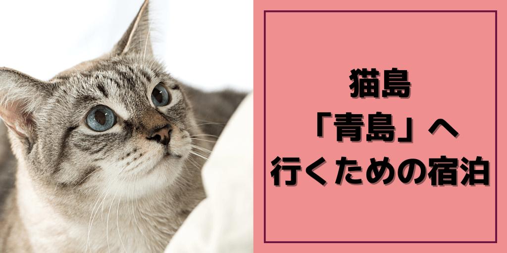 猫島青島の宿泊